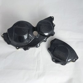 Carbon Motorschützer Set