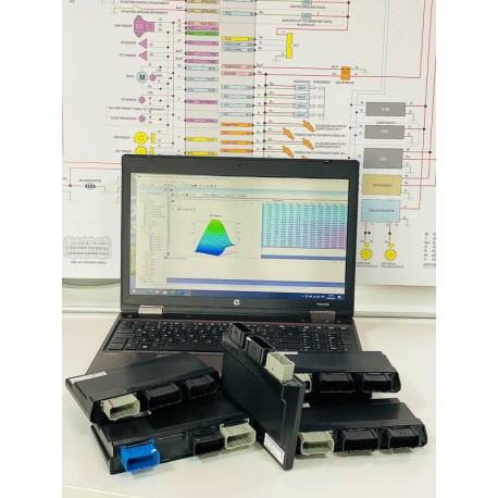 Softwareupdate Stufe 2 CBR1000RR-R SC82