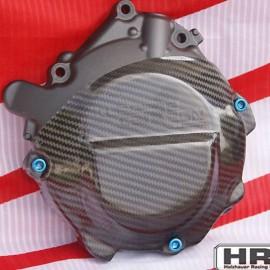 Carbon Motorschutz limaseitig